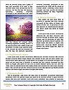 0000088002 Word Template - Page 4