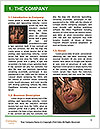 0000088006 Word Template - Page 3