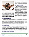 0000088007 Word Template - Page 4