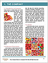 0000088014 Word Templates - Page 3