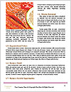0000088029 Word Templates - Page 4