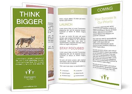 0000088035 Brochure Templates