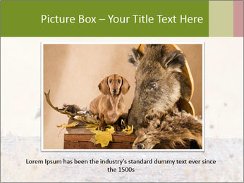 Coyote prowling on the farm PowerPoint Template - Slide 16