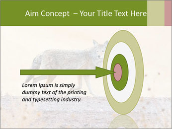 Coyote prowling on the farm PowerPoint Templates - Slide 83