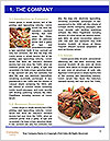 0000088037 Word Template - Page 3