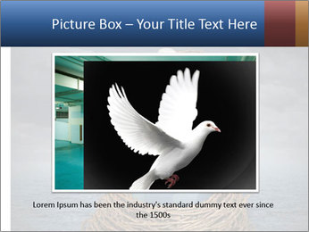 Global Peace PowerPoint Template - Slide 15