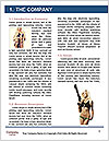 0000088047 Word Template - Page 3