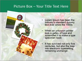 Berries PowerPoint Template - Slide 17