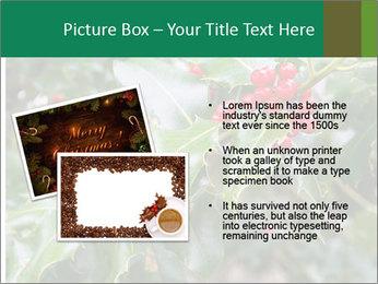 Berries PowerPoint Template - Slide 20