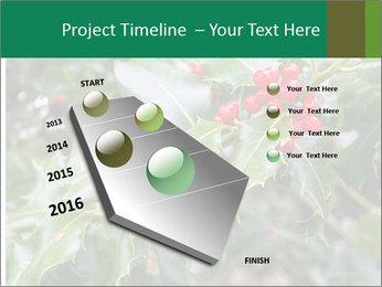 Berries PowerPoint Template - Slide 26