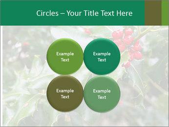Berries PowerPoint Template - Slide 38