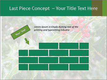 Berries PowerPoint Template - Slide 46