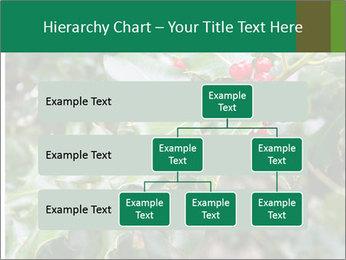Berries PowerPoint Template - Slide 67