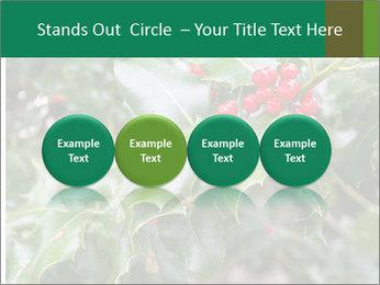 Berries PowerPoint Template - Slide 76