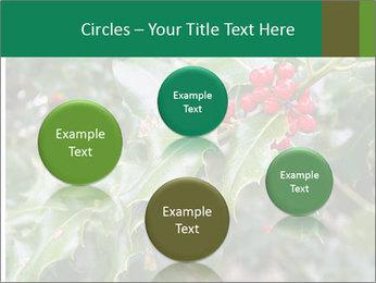 Berries PowerPoint Template - Slide 77