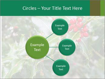 Berries PowerPoint Template - Slide 79