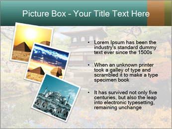 Japan PowerPoint Template - Slide 17