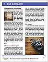 0000088061 Word Template - Page 3