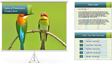 Couple of Bird PowerPoint Template