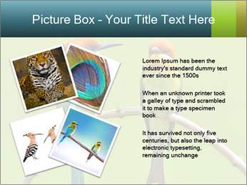 Couple of Bird PowerPoint Template - Slide 23