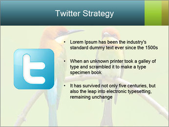 Couple of Bird PowerPoint Template - Slide 9