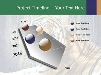 Tiger PowerPoint Templates - Slide 26