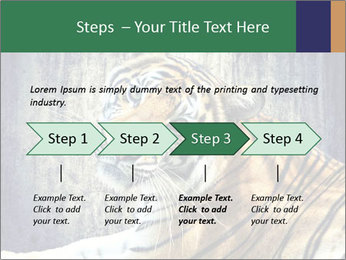 Tiger PowerPoint Templates - Slide 4