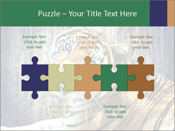 Tiger PowerPoint Templates - Slide 41