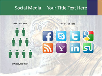 Tiger PowerPoint Templates - Slide 5
