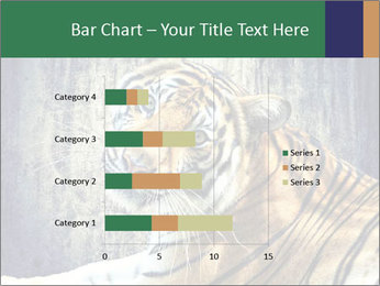 Tiger PowerPoint Templates - Slide 52