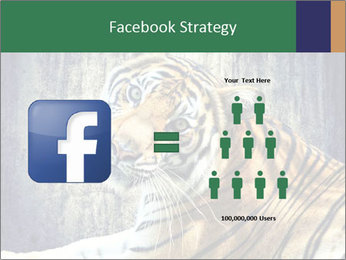 Tiger PowerPoint Templates - Slide 7
