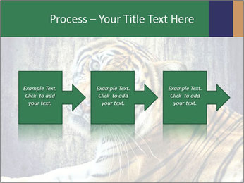 Tiger PowerPoint Templates - Slide 88