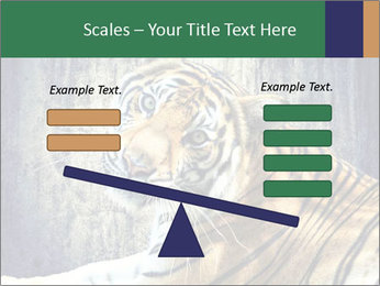 Tiger PowerPoint Templates - Slide 89