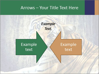 Tiger PowerPoint Templates - Slide 90