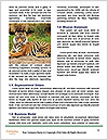 0000088074 Word Templates - Page 4