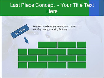 Water Miss PowerPoint Template - Slide 46