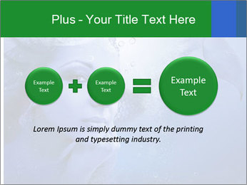 Water Miss PowerPoint Template - Slide 75
