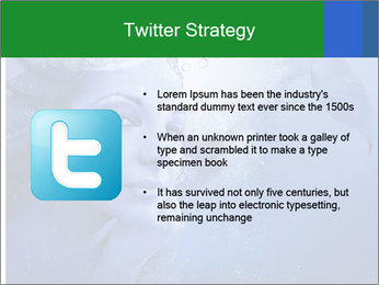 Water Miss PowerPoint Template - Slide 9
