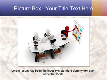 Brown Recluse PowerPoint Template - Slide 15