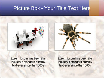 Brown Recluse PowerPoint Template - Slide 18