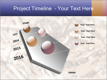 Brown Recluse PowerPoint Template - Slide 26