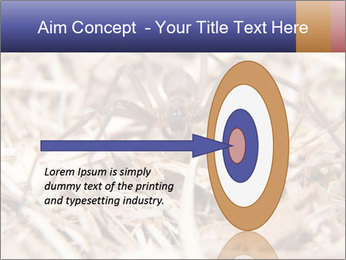 Brown Recluse PowerPoint Template - Slide 83