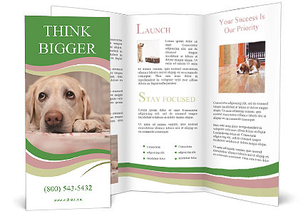 0000088085 Brochure Templates