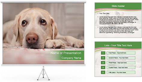 The dog PowerPoint Template