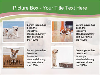 The dog PowerPoint Template - Slide 14
