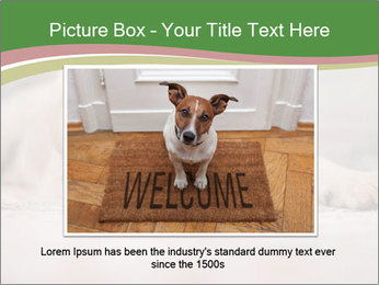 The dog PowerPoint Template - Slide 15
