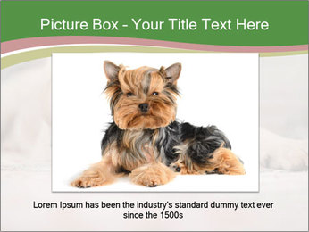 The dog PowerPoint Template - Slide 16