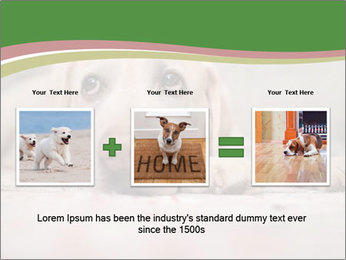 The dog PowerPoint Template - Slide 22