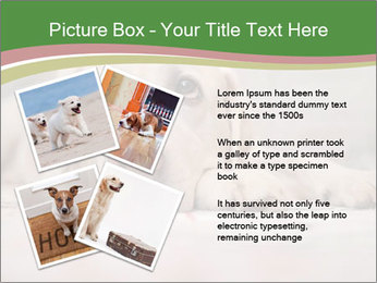 The dog PowerPoint Template - Slide 23