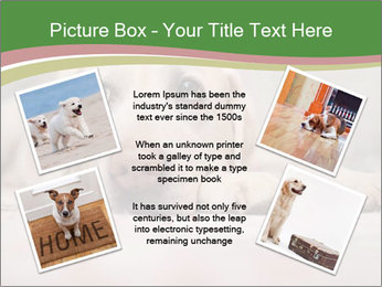 The dog PowerPoint Template - Slide 24